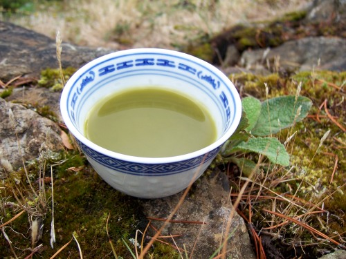 green tea on the mountain